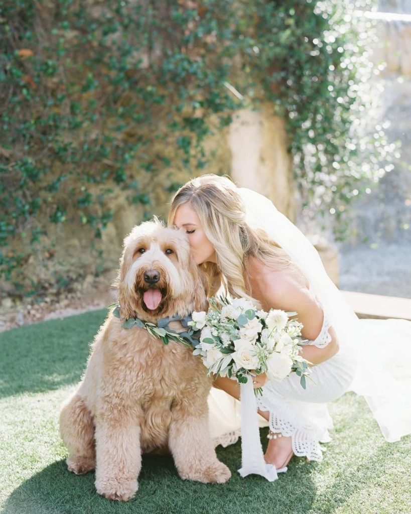 Friday calls for kisses with our furry friends! We are always excited to take a walk down memory lane &